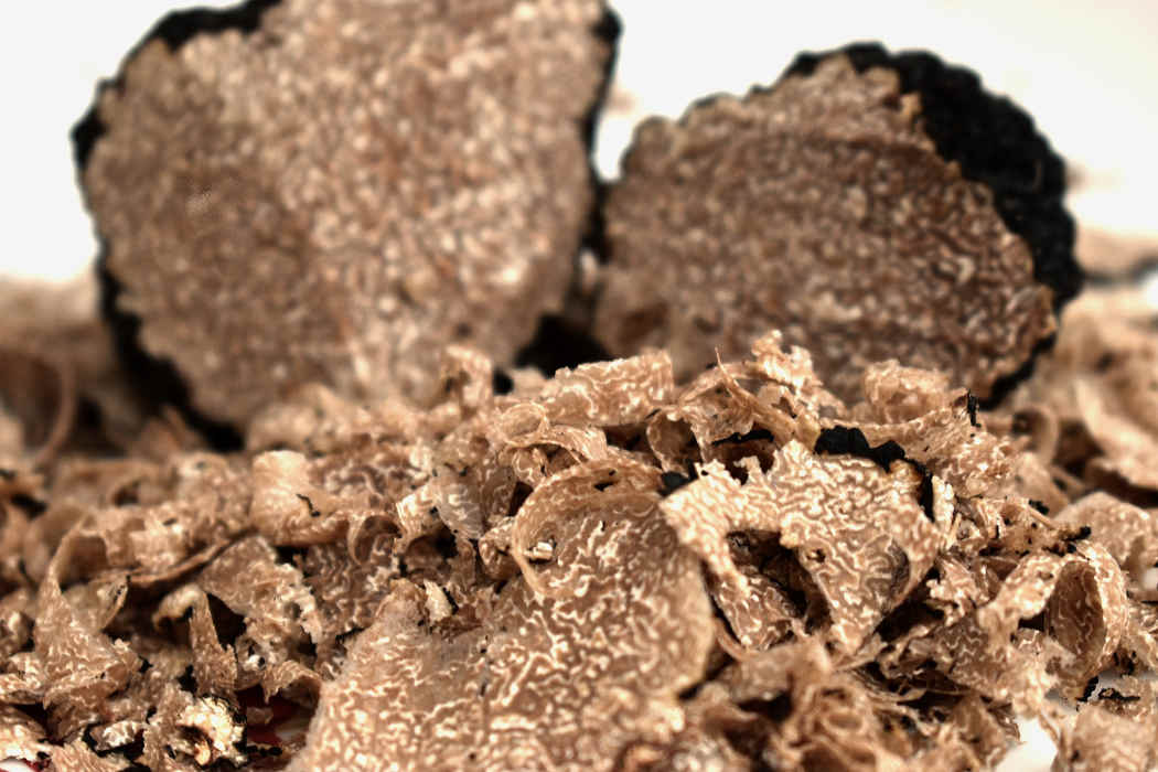 Verse truffels uit Italië