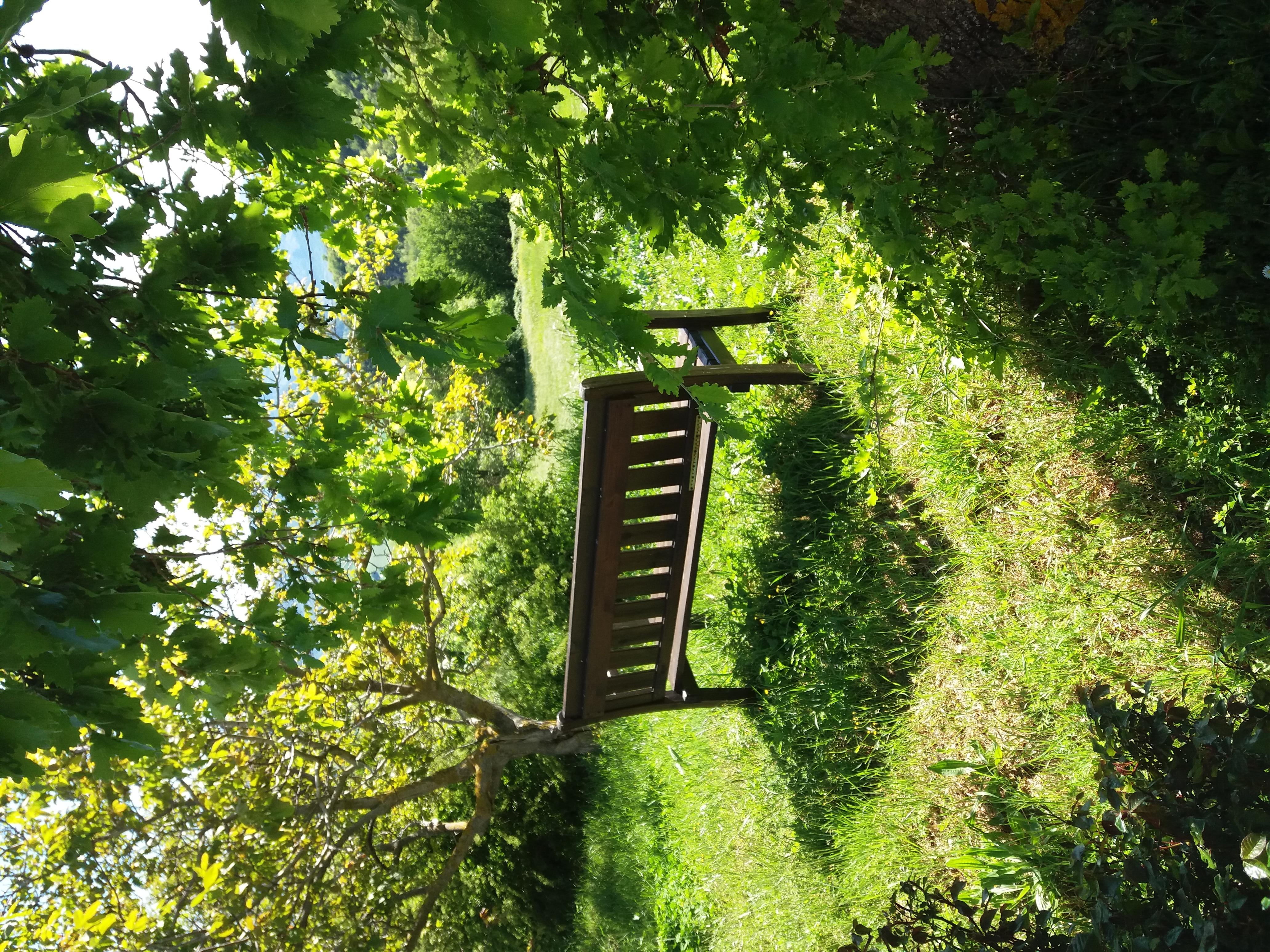 Relax in de tuin